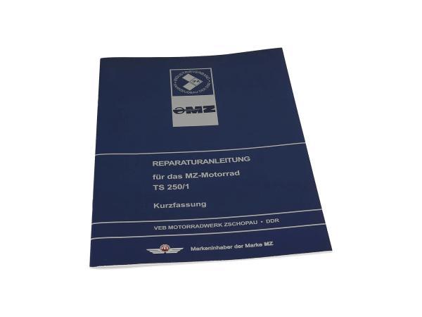 Reparaturanleitung - Kurzfassung für TS 250, TS250/1,  10005518 - Bild 1