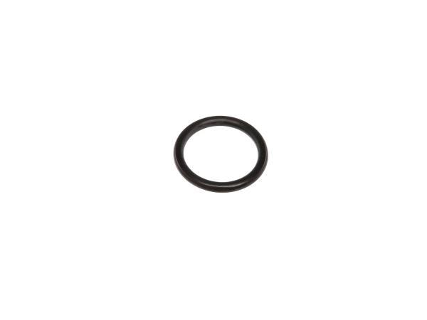 10002525 O-Ring für Verschlussschraube - Bild 1