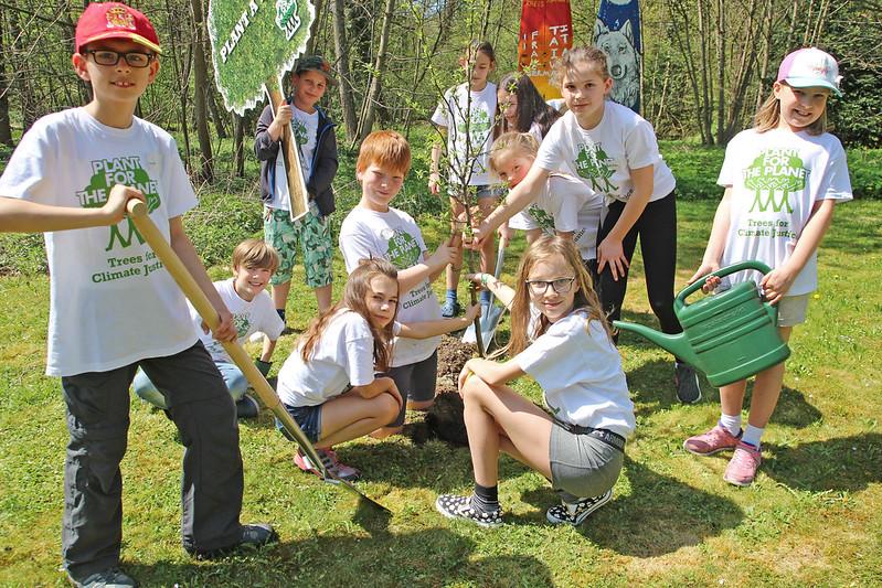 plant_Akademie_Kinder_Baum
